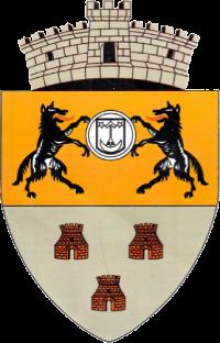 Primaria Satulung